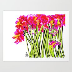 Red Flowers again, Hybiscus Art Print
