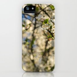 Trees in bloom, Spring is here iPhone Case