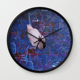 Swimming In A False Idaho Wall Clock