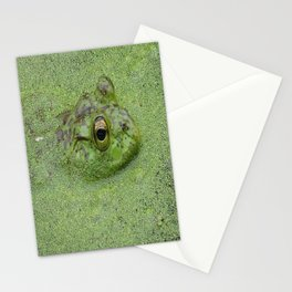 Frog at Nisqually in green water Stationery Cards