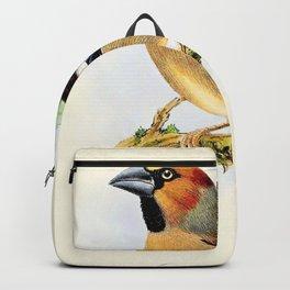 John Gerrard Keulemans - Coccothraustes coccothraustes - Hawfinch - Digital Remastered Edition Backpack