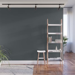 PPG Glidden Black Forest (Dark Blue Gray) PPG1012-7 Solid Color Wall Mural