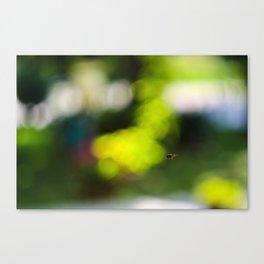 bzz Canvas Print