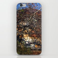 Rusted and Forgotten iPhone Skin