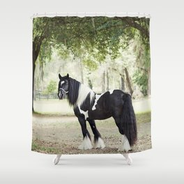 Majestic Horse in Color Shower Curtain