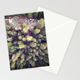 Aerial Wilderness Stationery Cards