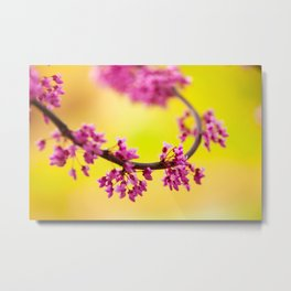 Shapes of spring Metal Print