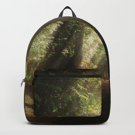 Lost In the Light Backpack