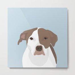 Sweet and Gentle Pit Bull Terrier Metal Print