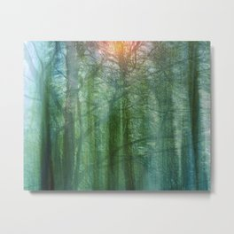 forest morning dream Metal Print