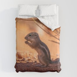 Ground Squirrel Comforters