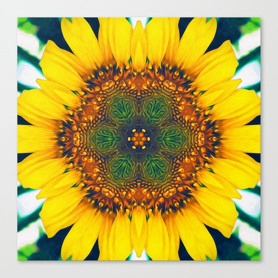 Structure of A Sunflower Canvas Print