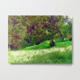 Landscape. © J&S Montague. Metal Print
