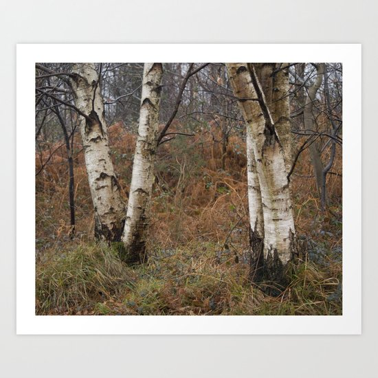 invierno Art Print