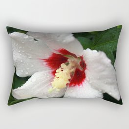 A Gift from the Universe Rectangular Pillow