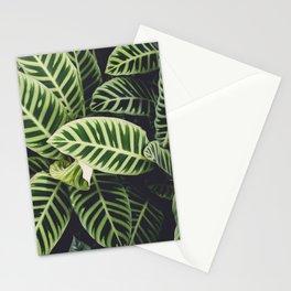Jungle Botanicals Stationery Cards