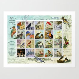 Birds of a Feather Postal Collage Art Print