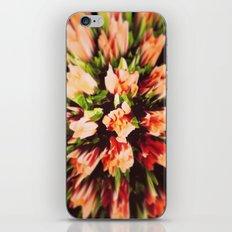 Roses II iPhone & iPod Skin