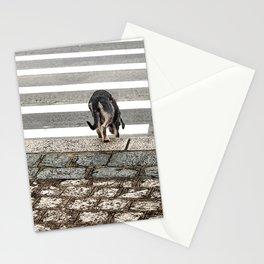 Falsecurity Stationery Cards