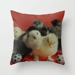 many small pullet in red and gold with two soccer balls funny Throw Pillow