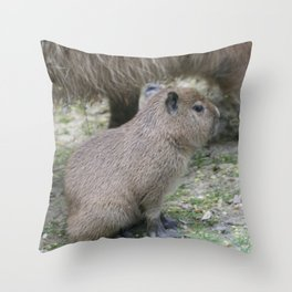 adorable capybara baby Throw Pillow