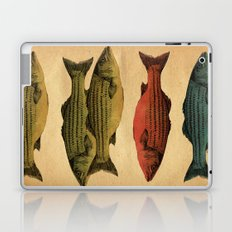One fish Two fish... Laptop & iPad Skin
