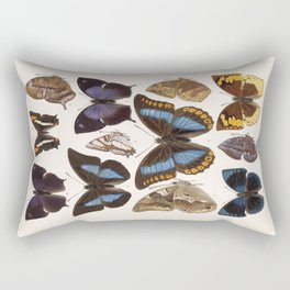 Vintage Scientific Insect Butterfly Moth Biological Hand Drawn Species Art Illustration Rectangular Pillow