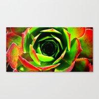 succulent Canvas Prints featuring Succulent by Derek Fleener