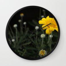 Spring - Chrysanthemum Wall Clock