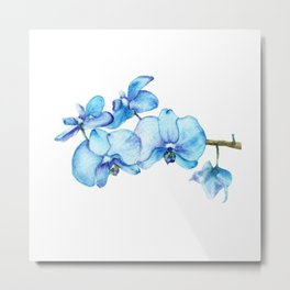 Blue Orchids Two - Watercolor Metal Print