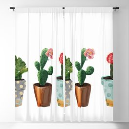 Three Cacti With Flowers On White Background Blackout Curtain