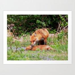 Mama fox & baby Art Print