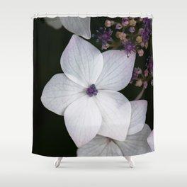 Purple and Blue Hydrangea Shower Curtain