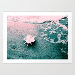 Shell on the beach 02 Art Print
