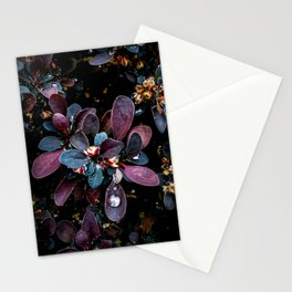 Barberry Adorned Stationery Cards