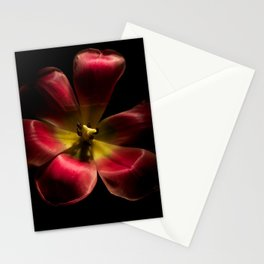 Red Tulip Up Close Stationery Cards