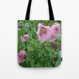Poppies in rain Tote Bag