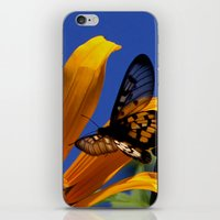 transparent iPhone & iPod Skins featuring Transparent Butterfly by Donuts