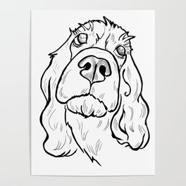 Thoughtful spaniel Poster