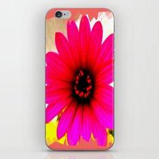 Summer Feeling iPhone & iPod Skin