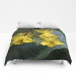 Copenhagen Yellow Comforters
