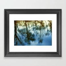 Pond Trees  Framed Art Print