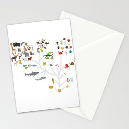 Evolution scale from unicellular organism to mammals. Evolution in biology, scheme evolution of anim Stationery Cards