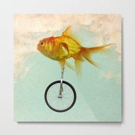 unicycle goldfish 02 Metal Print