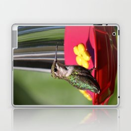 Fisheye Hummingbird Laptop & iPad Skin