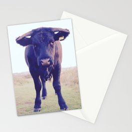 You looking at me? Stationery Cards