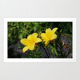 Shine Brite Little Yellow Art Print