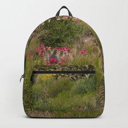 Painted Desert - VI Backpack