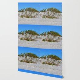 Dunes on Gasparilla III Wallpaper