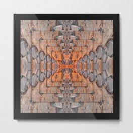 Petrified Wood In Focus Metal Print